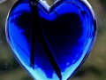Blaues-Herz