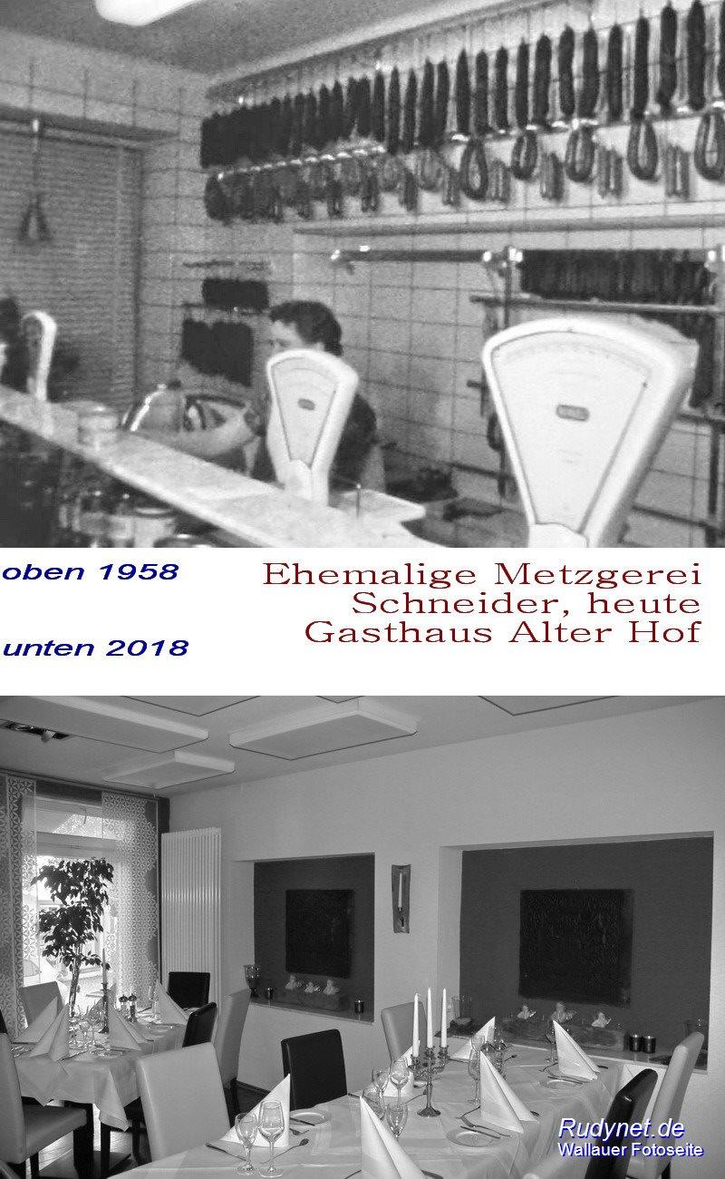 ##Schneider-Metzger