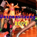 titel-Wespen-goes-Wi-2009